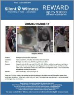 Armed Robbery / Various locations, including retail stores and restaurants. (Mesa)