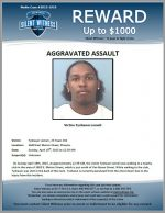 Aggravated Assault / Tyshawn Lomeli