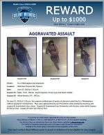 Aggravated Assault / Fry's 3036 E. Thomas Rd