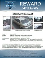 Aggravated Assault / 35 year old male