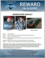 Aggravated Assault / 39 year old female