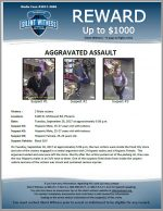 Aggravated Assault / 2 male victims