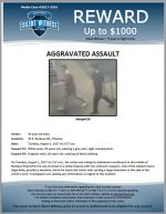 Aggravated Assault / 34 year old male