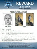 Aggravated Assault / 17 W. Monroe St