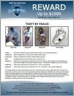Burglary / Theft by Fraud / multiple locations