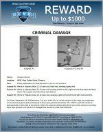 Felony Criminal Damage / 4006 West Osborn Road, Phoenix