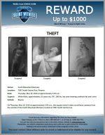Felony Theft / 7007 South Central Ave, Phoenix