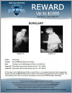 Burglary / 3000 W. Daley Ln., Phoenix