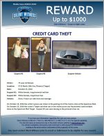 Credit Card Theft / 5715 North 19th Ave, Phoenix (Target)