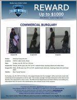 Commercial Burglary / American Executive Inn 1554 W. Main Street