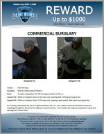 Commercial Burglary / PQH Wireless 9201 N. 29th Ave