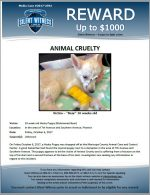 Animal Cruelty / In the area of 7th Avenue and Southern Avenue, Phoenix