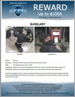 Commercial Burglaries / 8841 N. 19th Ave & 5869 S. Central Ave