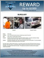 Burglary / Area of 350 S. Arizona Ave