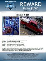Felony Theft / Various store locations in Surprise.