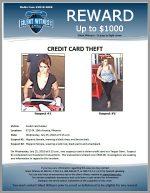 Credit Card Theft / 5715 N. 19th Avenue, Phoenix