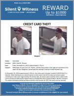 Credit Card Theft / 5051 E. Ray Rd, Phoenix