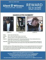 Aggravated Robbery / Circle K / 2401 E. Indian School Road
