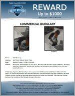 Commercial Burglary / CVS Pharmacy 1137 S. Dobson Rd., Mesa