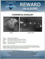 Commercial Burglary / Medical Marijuana dispensary