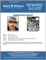 Aggravated Assault / 1300 W. Cocopah Street