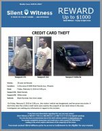 Credit Card Theft / In the area of 3300 West Peoria Ave., Phoenix
