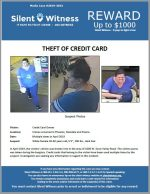 Theft of Credit Card / Various Locations