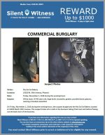 Commercial Burglary / 15820 N. 35th Avenue, Phoenix