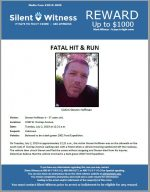 Fatal Hit and Run / Steven Hoffman Jr / 2200 W. Dunlap Avenue