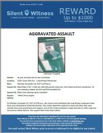 Aggravated Assault / 6260 South 35th Ave – Long Wong's Restaurant