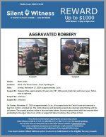 Aggravated Robbery / Adult Male / 966 E. Van Buren Street