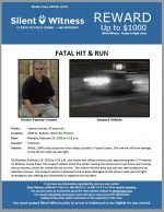 Fatal Hit and Run / Tammy Cowart / 2600 W. Bethany Home Rd, Phoenix