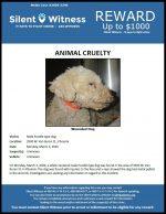 Animal Cruelty / 3500 W. Van Buren St.