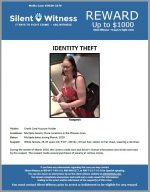 Identity Theft / Multiple Jewelry Store Locations in the Phoenix Area