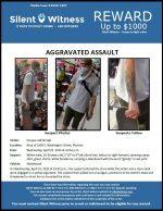 Aggravated Assault / Area of 1600 E. Washington Street, Phoenix