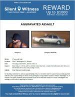 Aggravated Assault / 27-year-old male / 2402 E. Washington St.