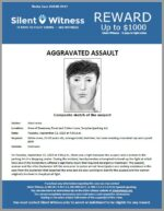 Aggravated Assault / Adult Male / Area of Greenway Road and Cotton Lane, Surprise