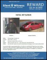 Fatal Hit & Run / Donovan Nakai / 600 N. 48th St.