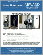 Aggravated Assault / In the area of 5500 S. Scott Place, Chandler