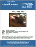 Fatal Hit and Run / Brad Mahler / 2900 N. 83rd Avenue, Phoenix