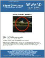 Aggravated Assault / 2300 E Frye Road , Chandler – San Tan Park