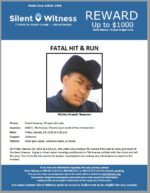 Hit and Run / Erandi Jimenez / 6000 S. 7th Avenue, Phoenix (just south of the intersection)