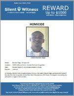 Homicide / Brandon Diggs / 1500 E Jefferson Street – Eastlake Park near the gazebos
