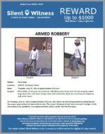 Armed Robbery / Adult Male / 3100 W. Van Buren Street