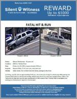 Fatal Hit and Run / Manuel Maldonado / 6800 W. Thomas Road