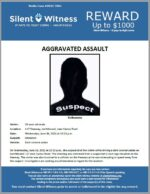 Aggravated Assault / 25-year-old male / I-17 Freeway, northbound, near Cactus Road