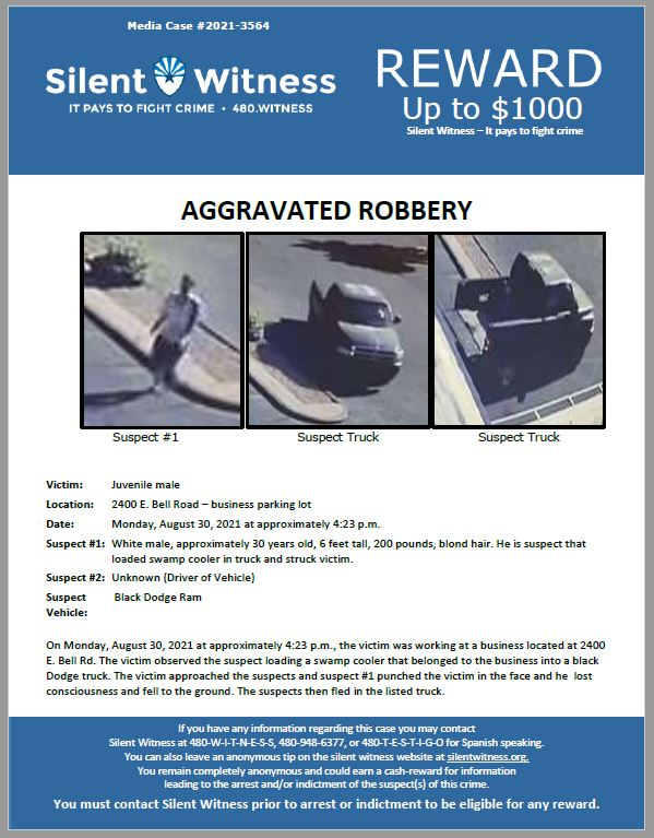 Aggravated Robbery / Juvenile Male / 2400 E. Bell Road