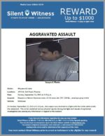 Aggravated Assault / Adult Male / 3470 W. Bell Road
