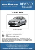 Fatal Hit & Run / 42-year-old female/ North Sarival Ave. & West Camelback Rd., Goodyear