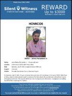 Homicide / Jaime Fernandez Jr. / In the area of 200 N. 88th Place, Mesa